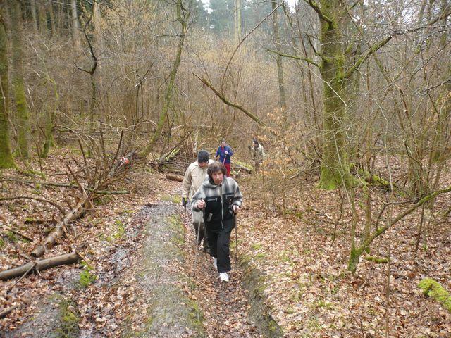 Sortie en Marche Nordique au Mont-des-pins 08/03/09 P1050520