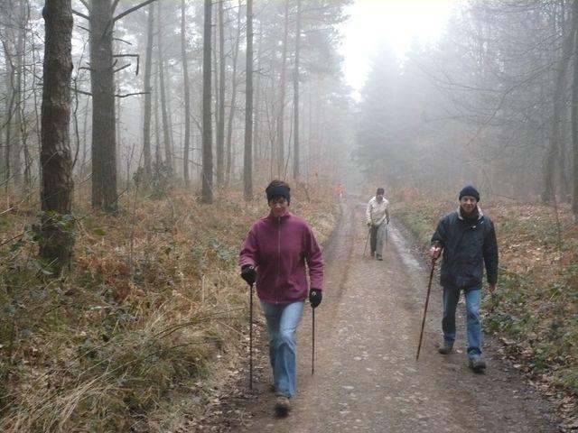 Sortie en marche Nordique à Wéris ce dimanche 22/03/09 P1050712