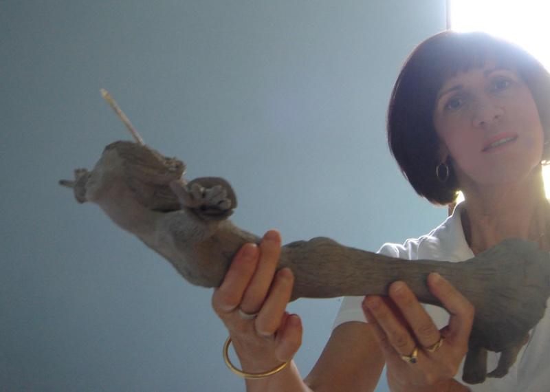 Projet Christiana Voler de ses propres ailes Sech10