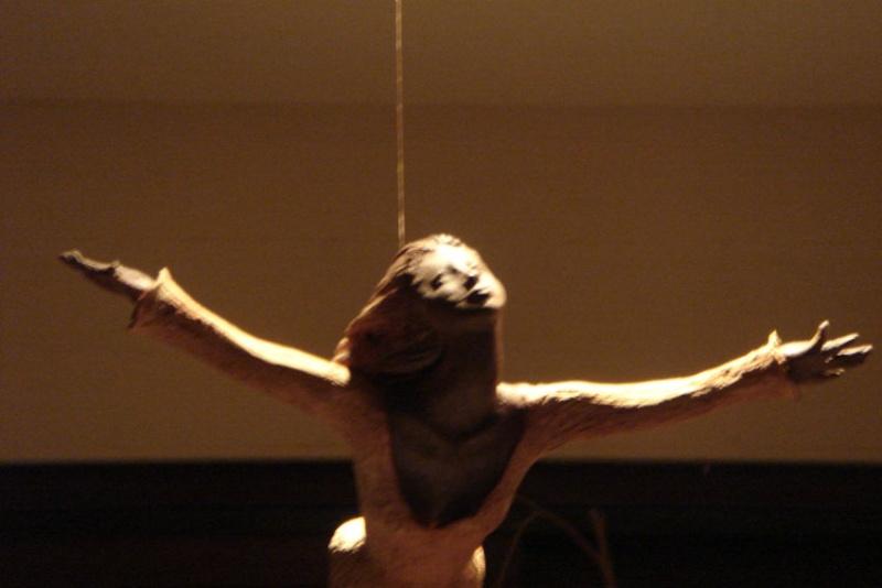 Projet Christiana Voler de ses propres ailes Vol211