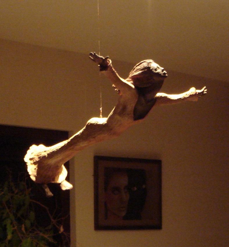 Projet Christiana Voler de ses propres ailes Vol510