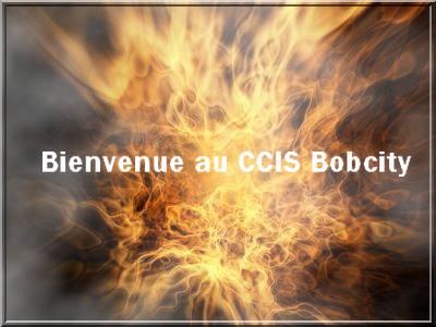 CCIS Bobcity