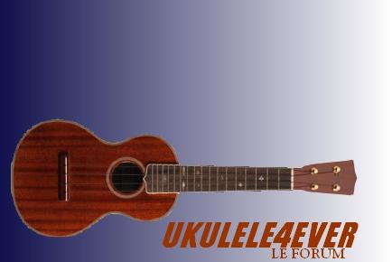 Améliorations Graphiques Ukulel10