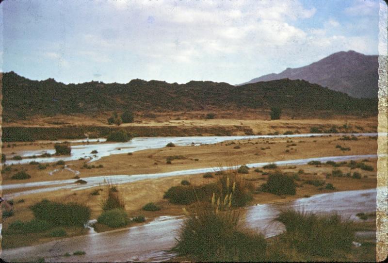 inondations au sahara - Page 2 16111