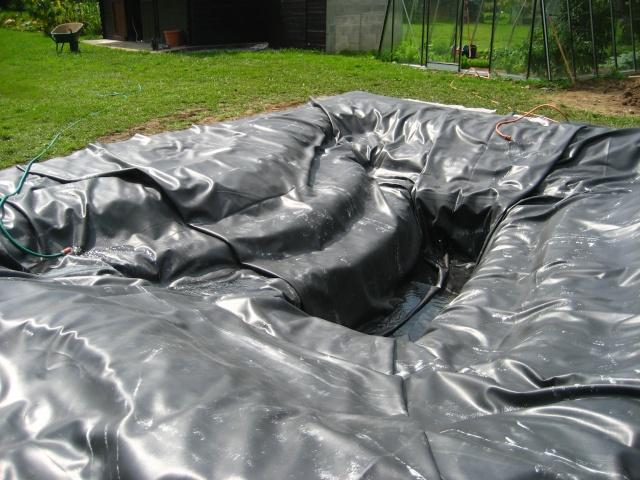 Expérience : une mare au jardin 028_1410