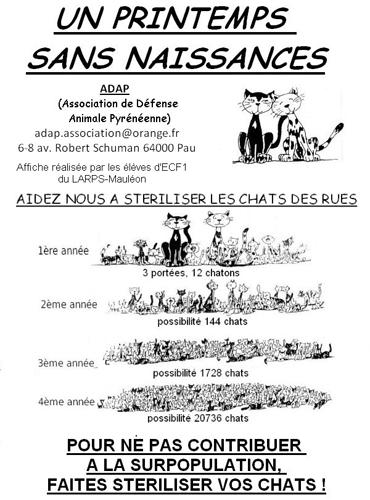 stérilisation - Stérilisation des chats - Page 2 _a-h10
