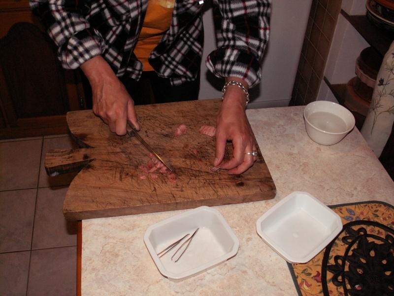 [Fiche pratique] Nourrissage Martinet et Rapace 0211