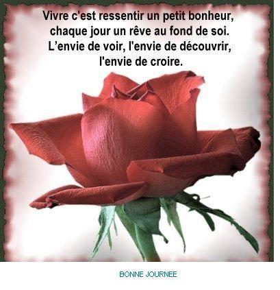 bonjour bon soir - Page 3 Rose1_10
