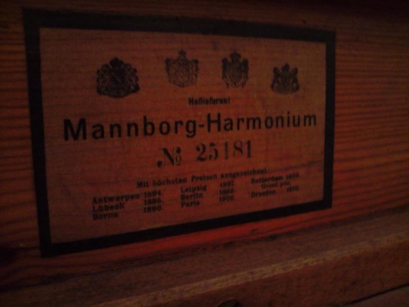 Un Mannborg d'art P1910011