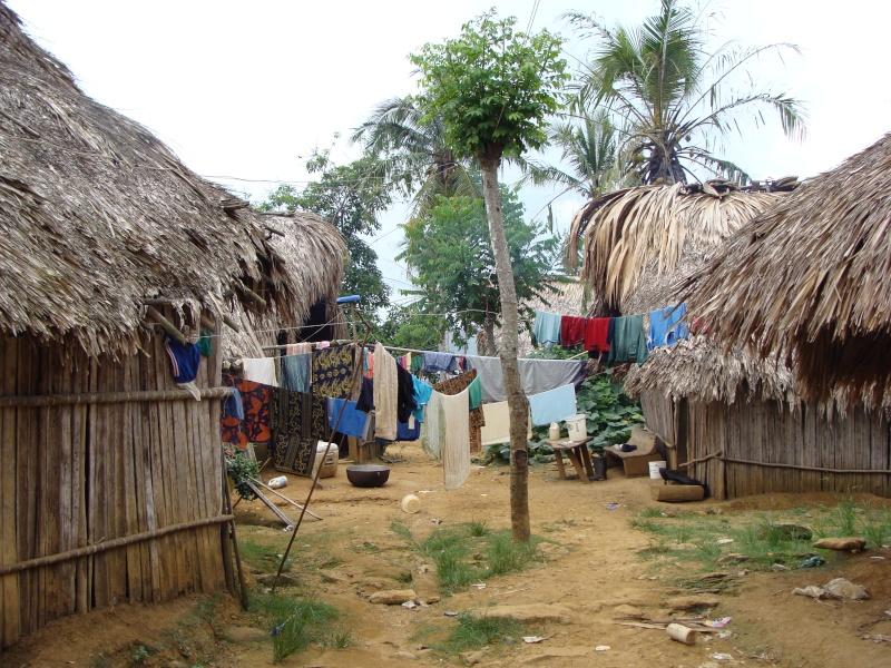 Les communautés Kunas de Madungandi et Pintupo (Panama) Pintup12