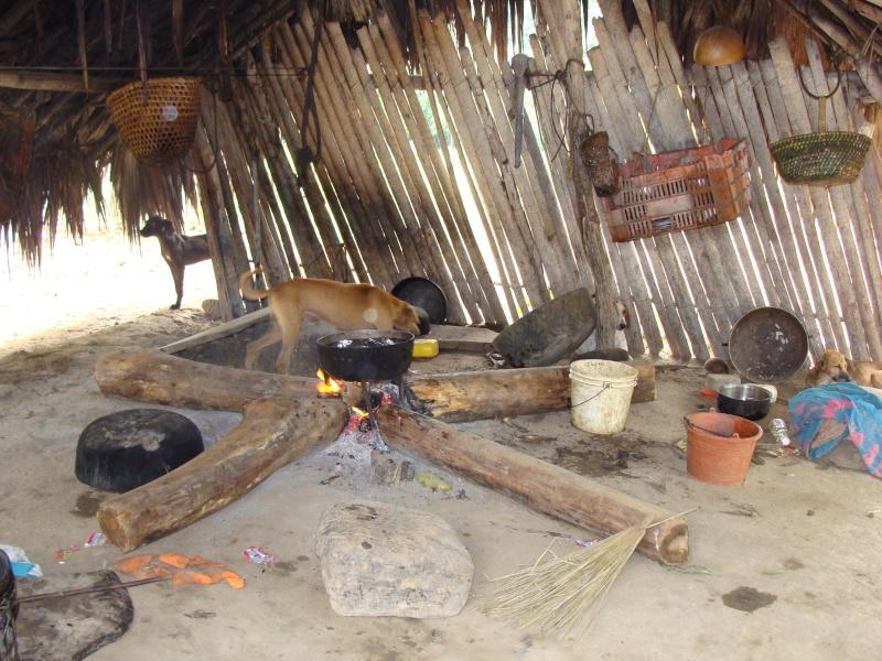 Les communautés Kunas de Madungandi et Pintupo (Panama) Pintup14