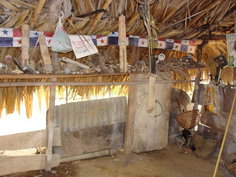 Les communautés Kunas de Madungandi et Pintupo (Panama) Pintup16