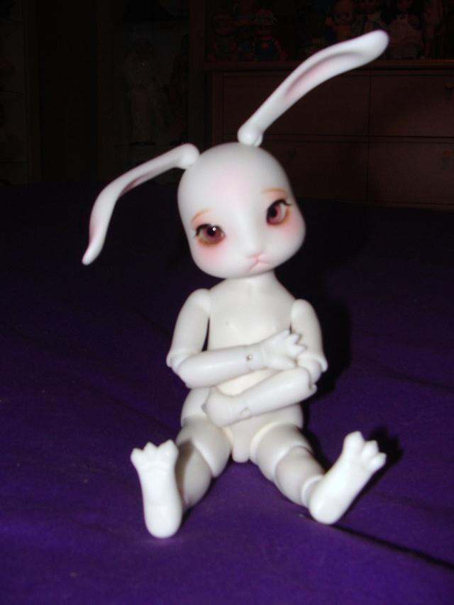 Fleur, petit lapin boudeur (Cocotribe Ruby) Dsc05910