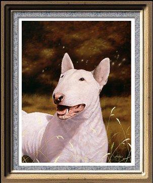 le Bull Terrier Bull-t10