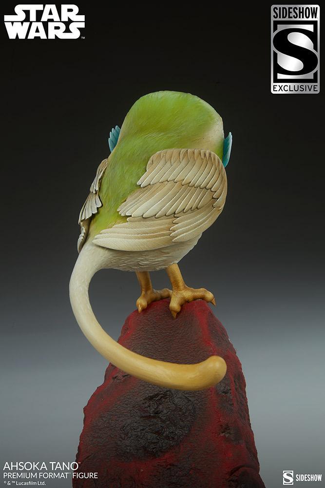 Ahsoka Tano Premium Format Figure - Sideshow Collectibles Ahsoka98