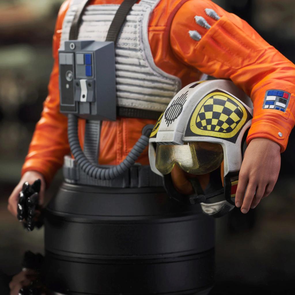 Biggs Darklighter Mini Bust Star Wars ANH - Gentle Giant Biggs_21
