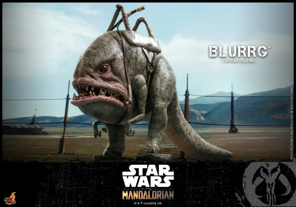 Blurrg 1/6th scale - Star Wars: The Mandalorian - Hot Toys Blurrg11