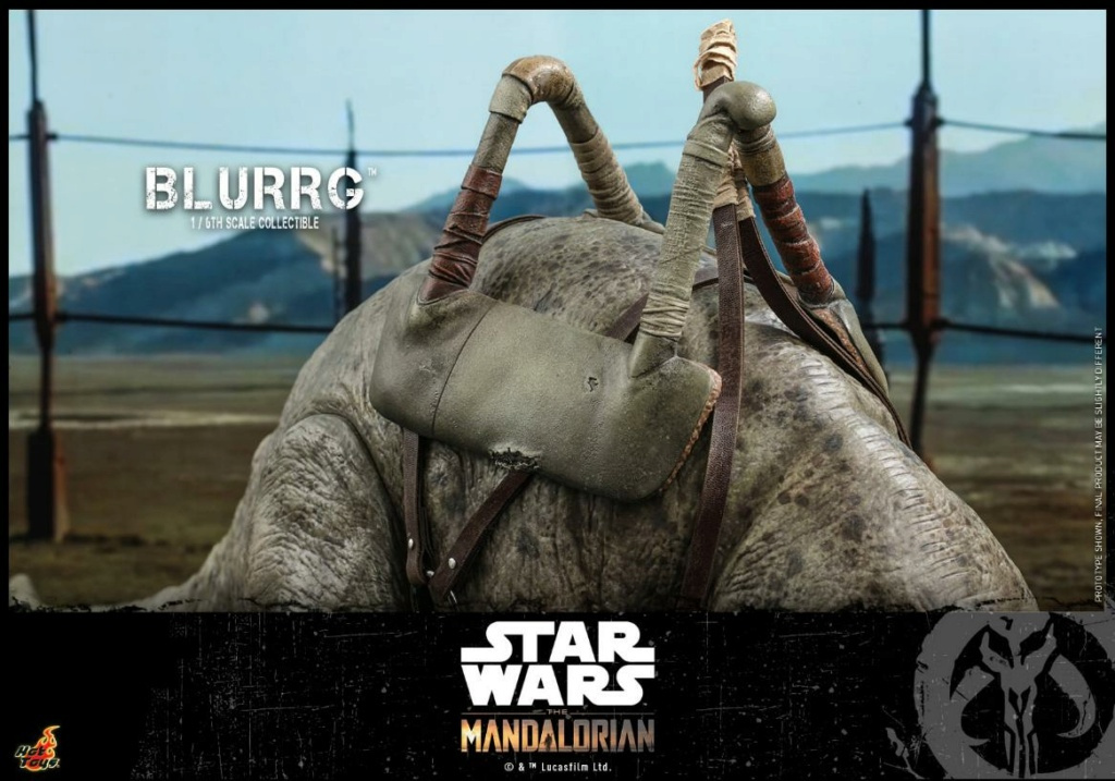 Blurrg 1/6th scale - Star Wars: The Mandalorian - Hot Toys Blurrg13