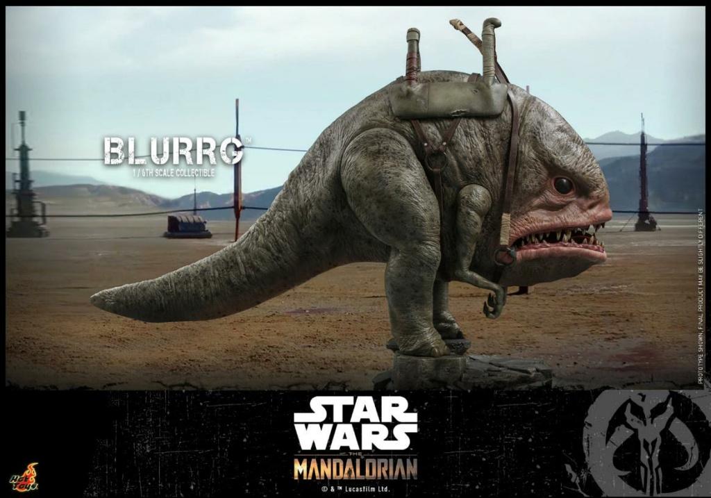 Blurrg 1/6th scale - Star Wars: The Mandalorian - Hot Toys Blurrg14