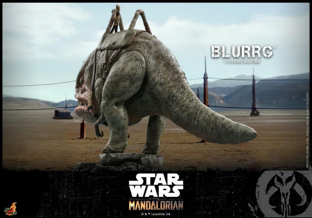Blurrg 1/6th scale - Star Wars: The Mandalorian - Hot Toys Blurrg15