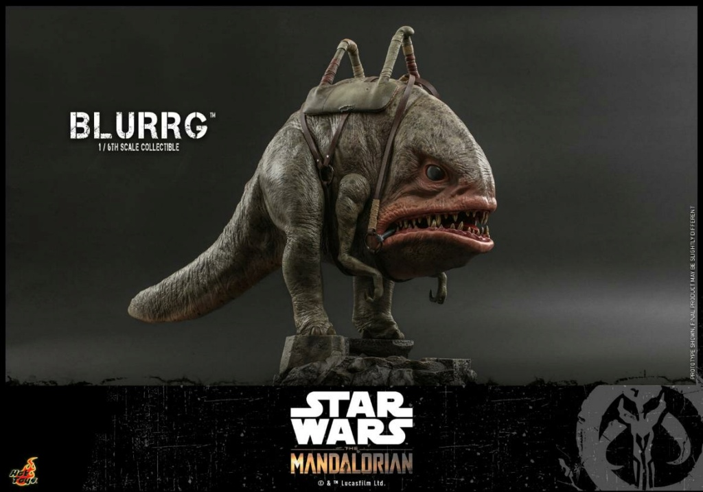 Blurrg 1/6th scale - Star Wars: The Mandalorian - Hot Toys Blurrg17