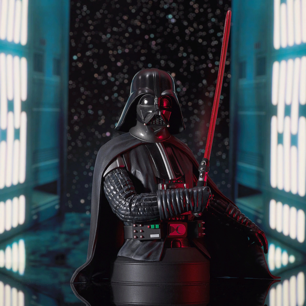 Darth Vader - A New Hope Mini Bust - Gentle Giant/DST Ep4_va11