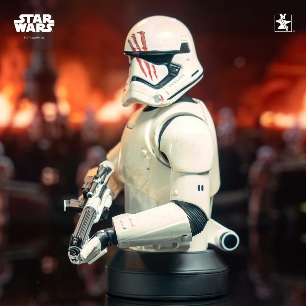 Finn (FN-2187) Mini Bust - The Force Awakens - Gentle Giant Finn_m21