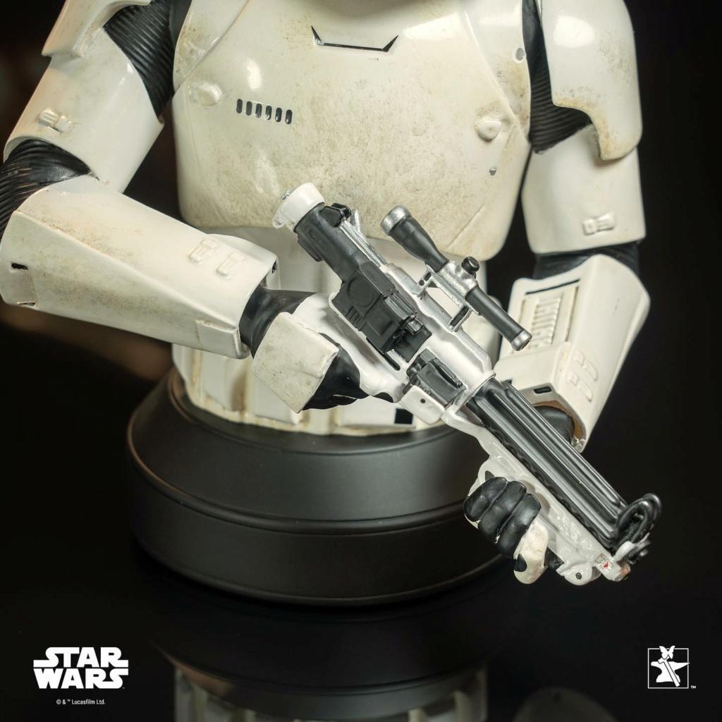 Finn (FN-2187) Mini Bust - The Force Awakens - Gentle Giant Finn_m22