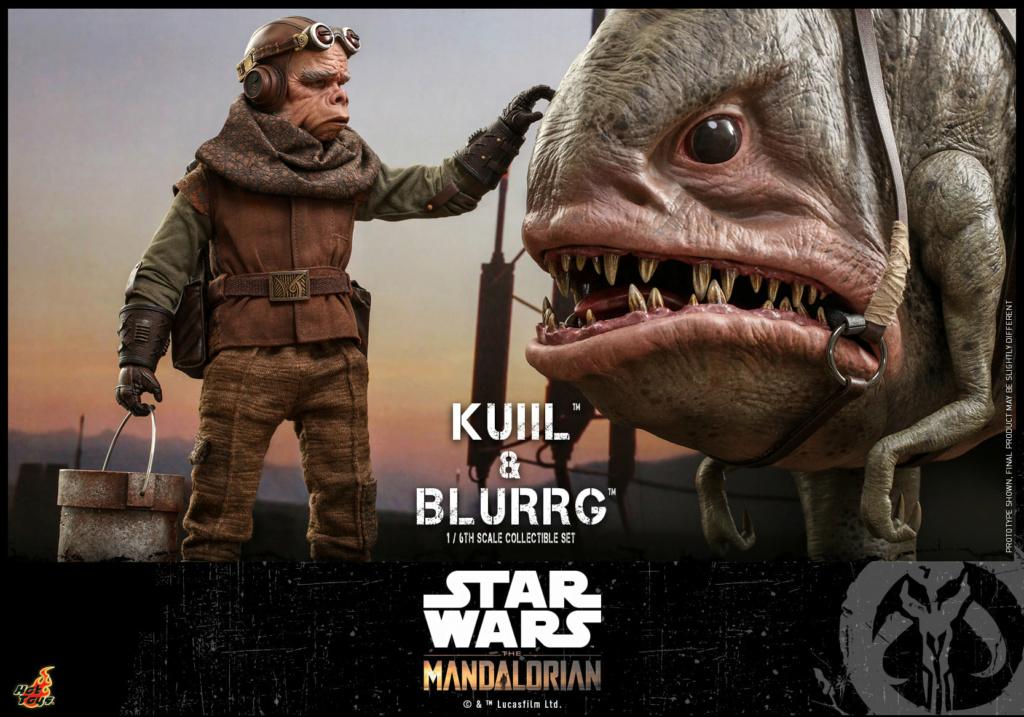 Kuiil & Blurrg Collectible Set - Star Wars - Hot Toys Kuiil_28
