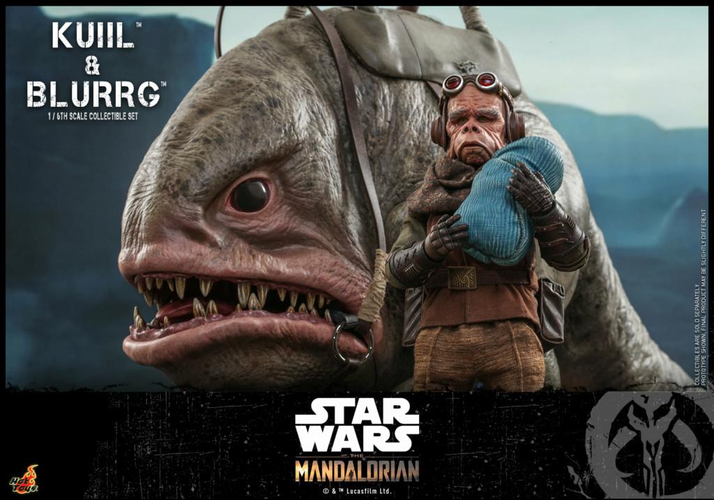 Kuiil & Blurrg Collectible Set - Star Wars - Hot Toys Kuiil_41