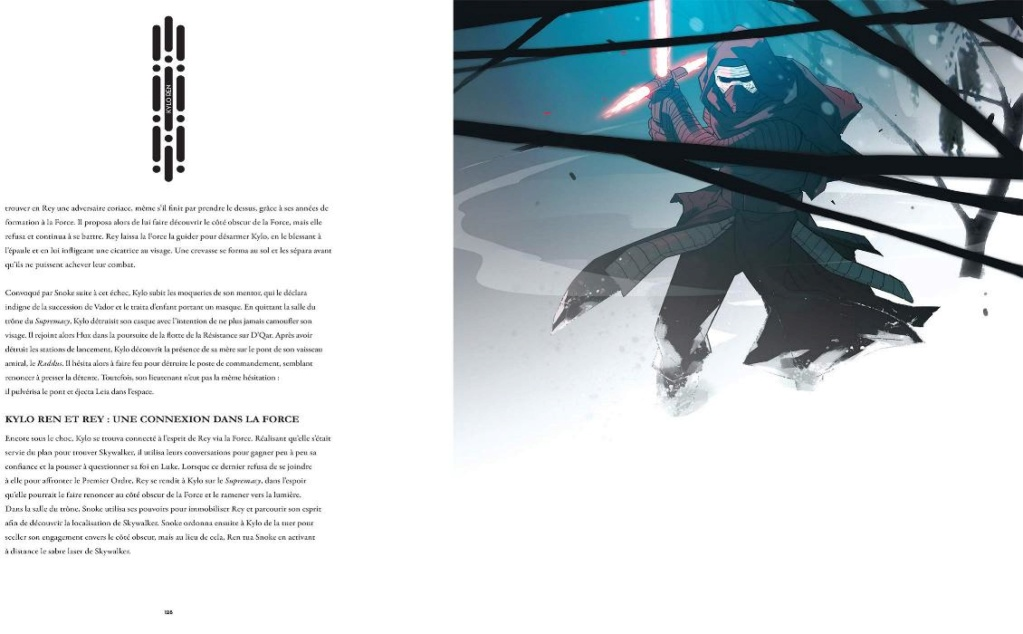 Star Wars : Le côté obscur Le_cot11