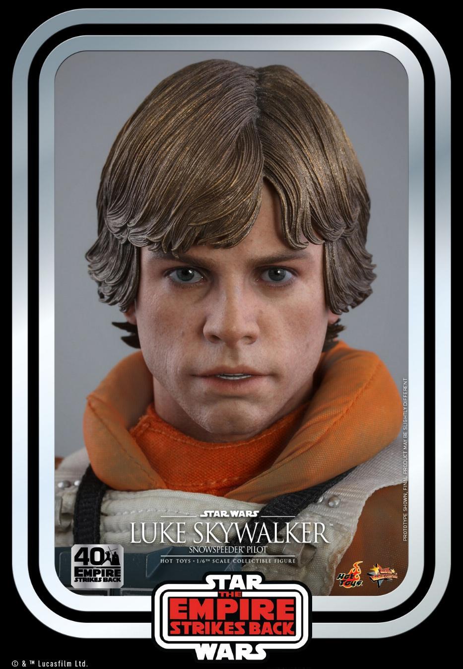 Luke Skywalker (Snowspeeder) Sixth Scale Figure – Hot Toys Luke_s19