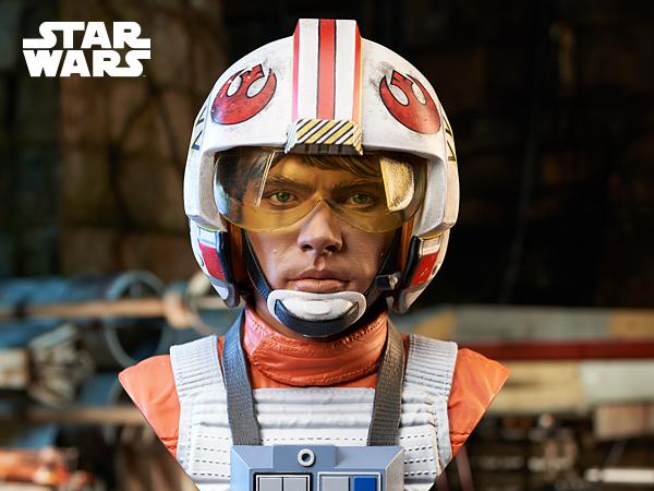 Luke Skywalker X-Wing Pilot Legends in 3D Bust  Gentle Giant Luke_s50