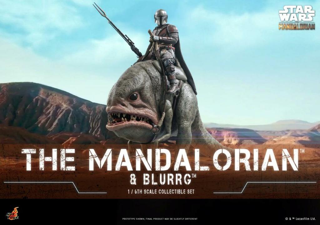 Star Wars The Mandalorian & Blurrg Collectible Set Hot Toys Mandal42