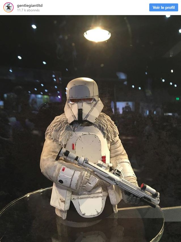 Gentle Giant - Star Wars Range Trooper Mini Bust Range_10