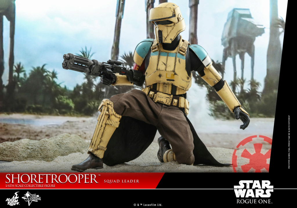 Shoretrooper Squad Leader Collectible Figure - 1/6  Hot Toys Shoret37