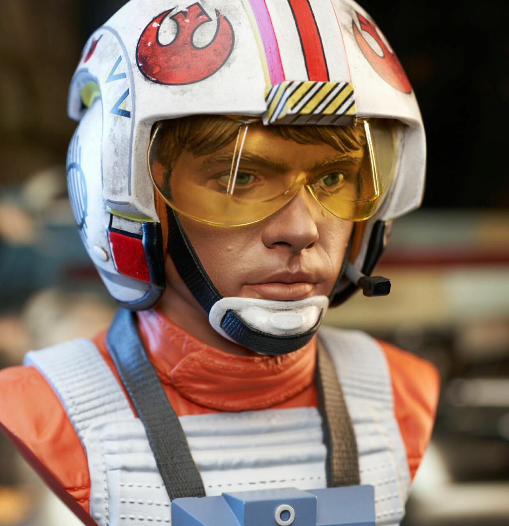 Luke Skywalker X-Wing Pilot Legends in 3D Bust  Gentle Giant Sw_pil17