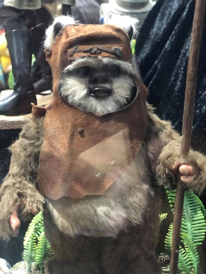 Wicket Sixth Scale Figure - Hot Toys Star Wars Wicket12