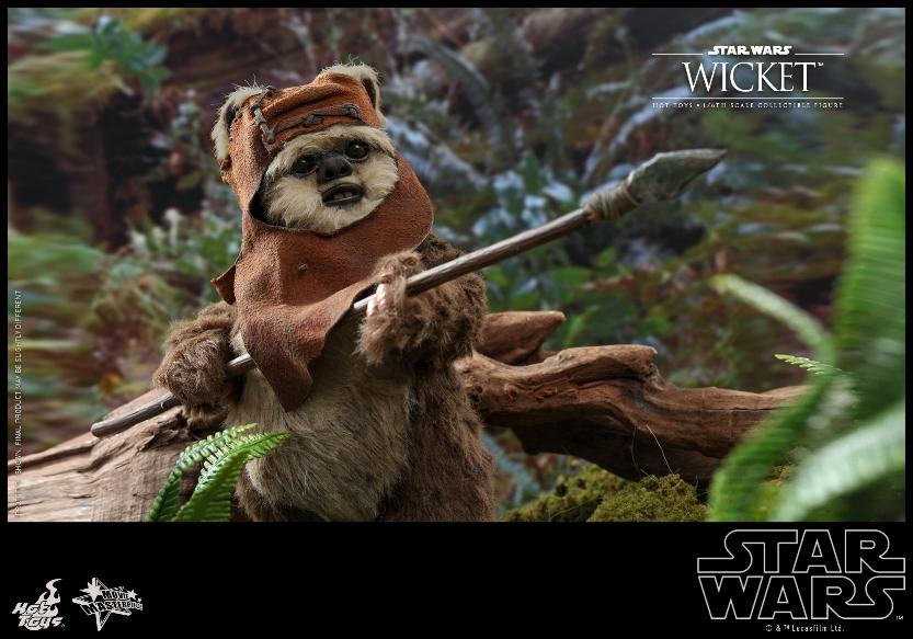 Wicket Sixth Scale Figure - Hot Toys Star Wars Wicket17