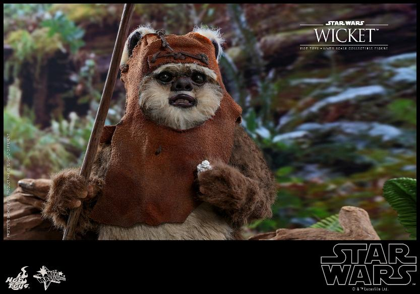 Wicket Sixth Scale Figure - Hot Toys Star Wars Wicket20