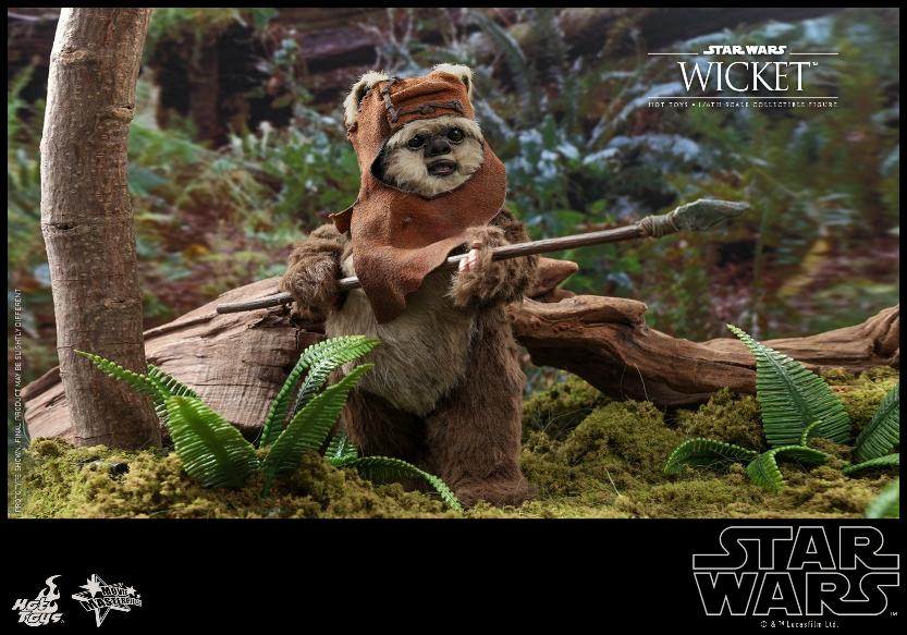 Wicket Sixth Scale Figure - Hot Toys Star Wars Wicket21