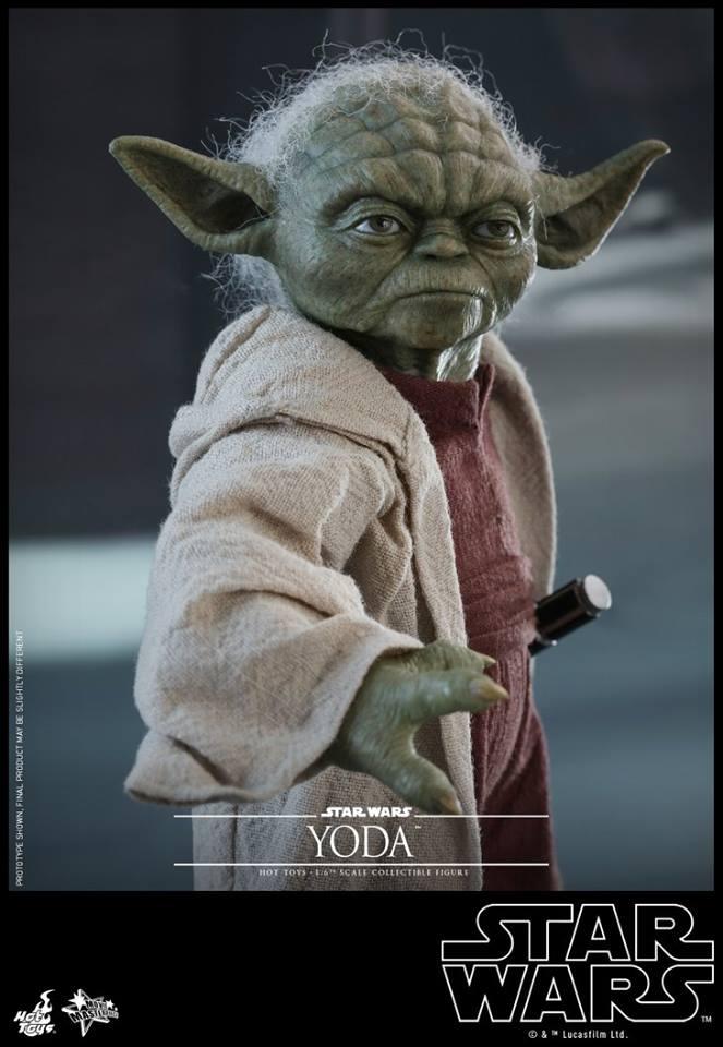 Hot Toys SW EP 2 - 1/6th scale Yoda Collectible Figure. Yoda_e15