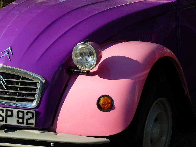 The pink 2cv P1050316