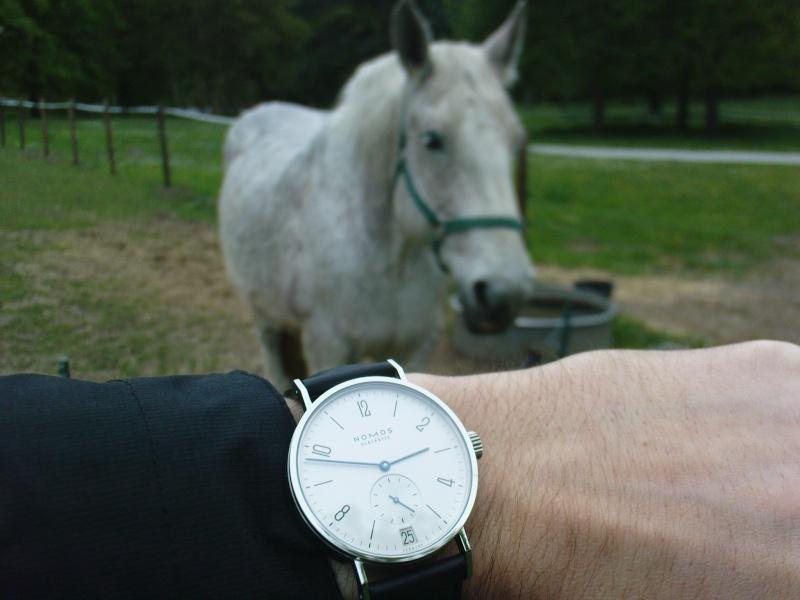 recherche d'une montre de ville habillée Dsc00510