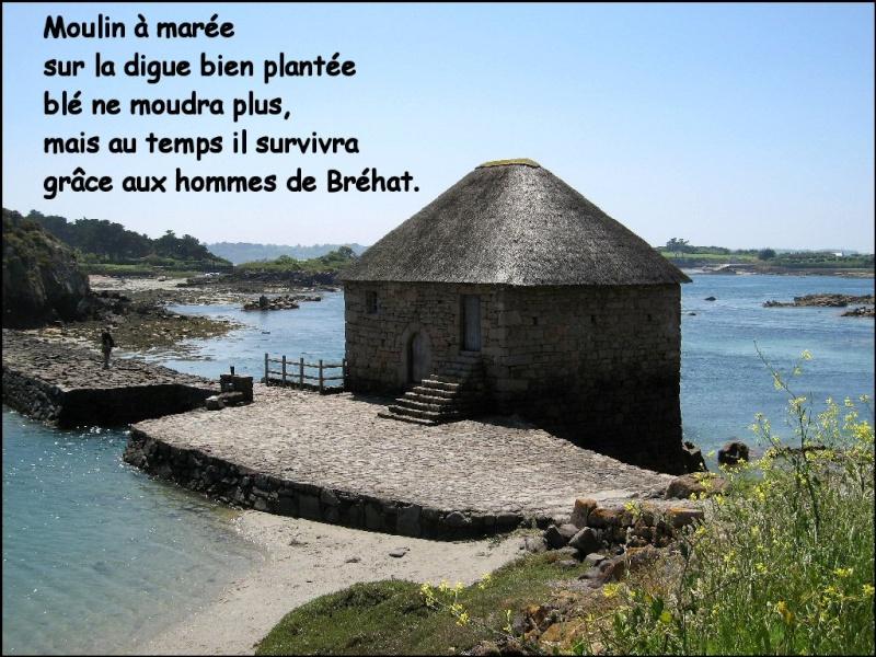 Le moulin à marée Img_0110