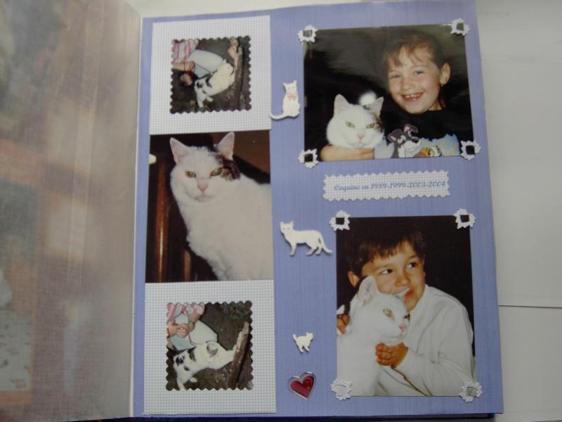 Srapbooking mes premières pages - Page 2 Pict1713