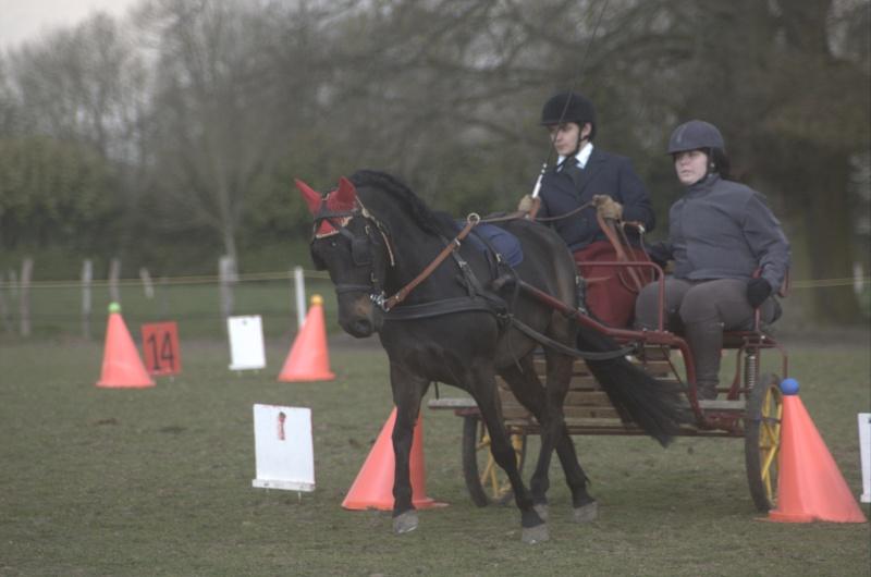 Une photo de vous et votre cheval Dsc_0111
