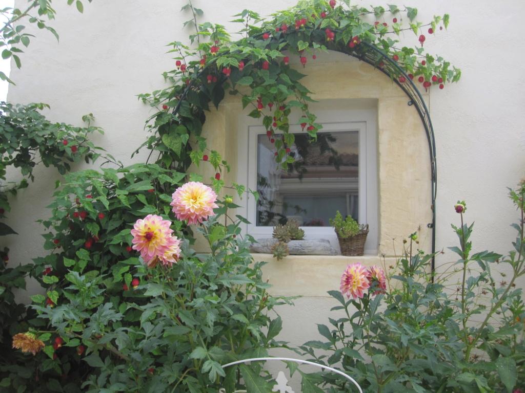 Des jardins ..... - Page 2 Img_5433