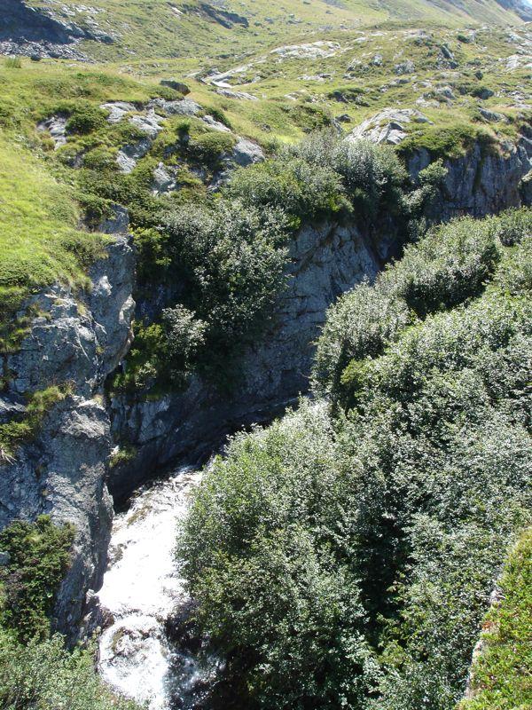Peisey / lac de la Plagne / col du Plan Séry Dsc04234