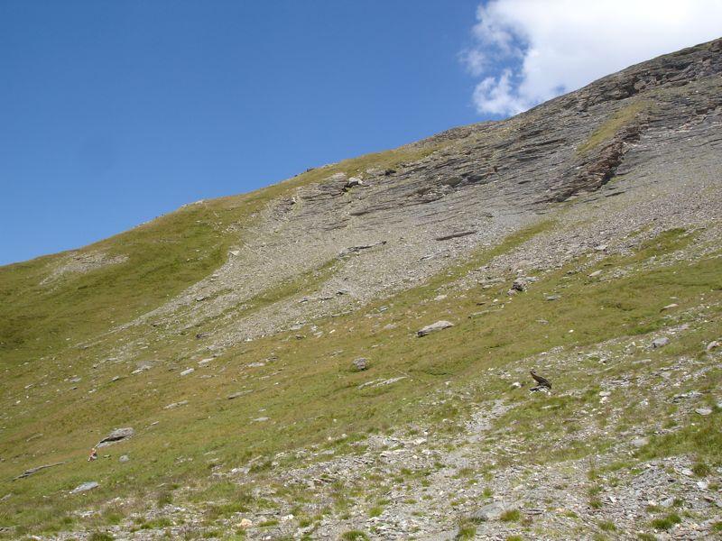 Le rocher de la Davie Dsc04353